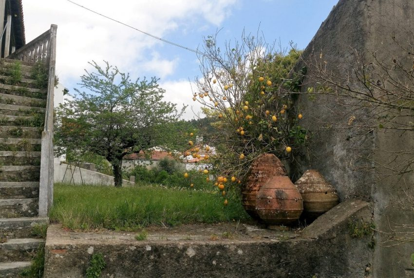 B&BEspinhal Coimbra (2)