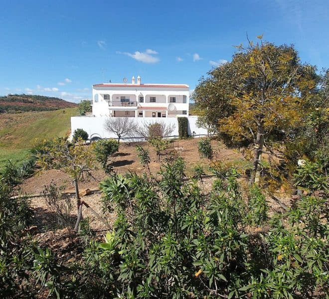 Ellis Real Estate Portugal, land and houses, Algarve