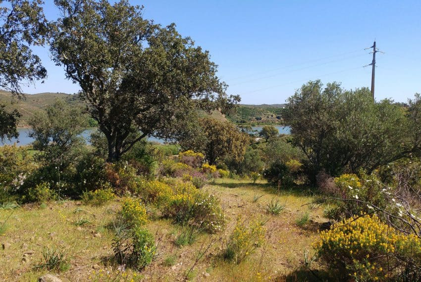 land with project Guardiana river (14)