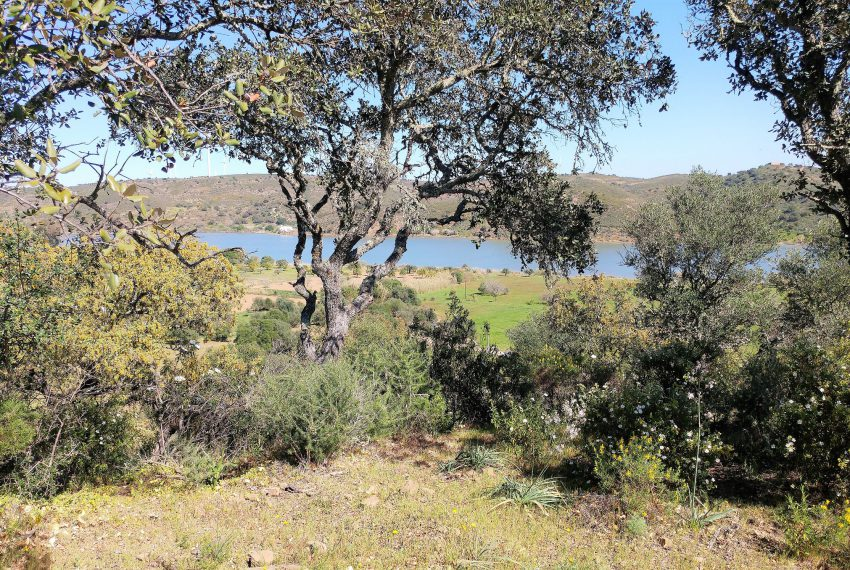 land with project Guardiana river (15)