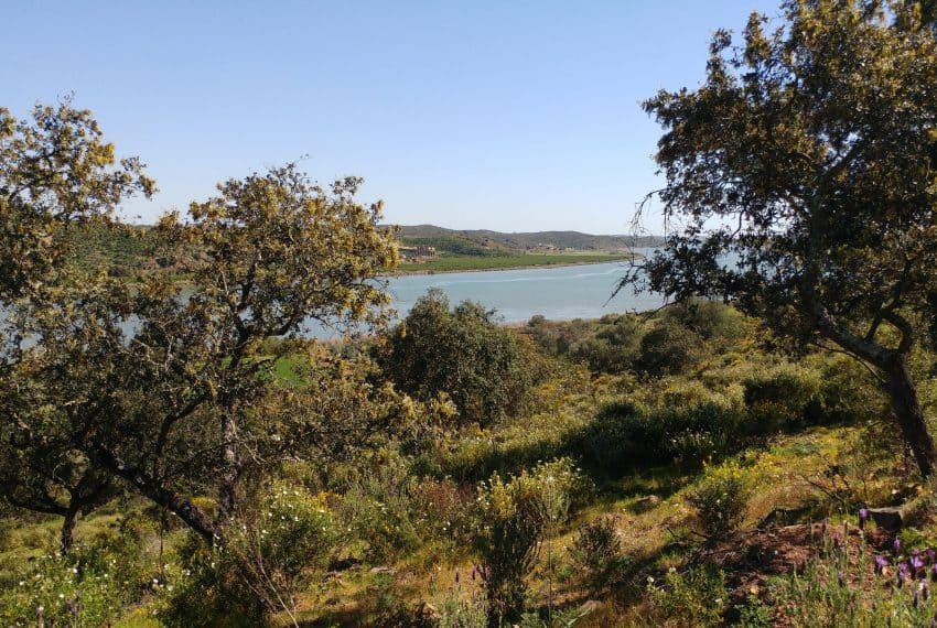 land with project Guardiana river (3)