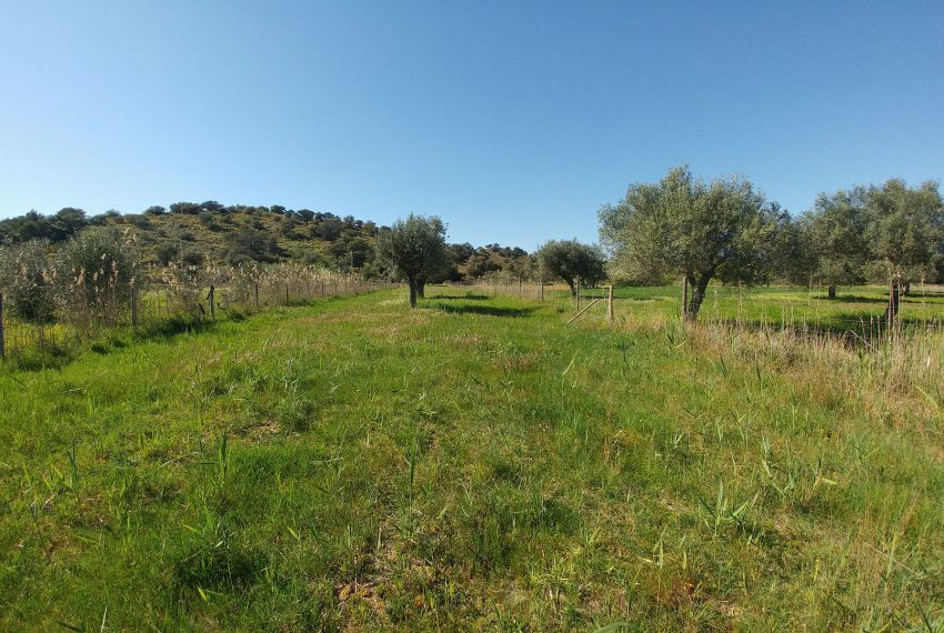 land with project Guardiana river (5)