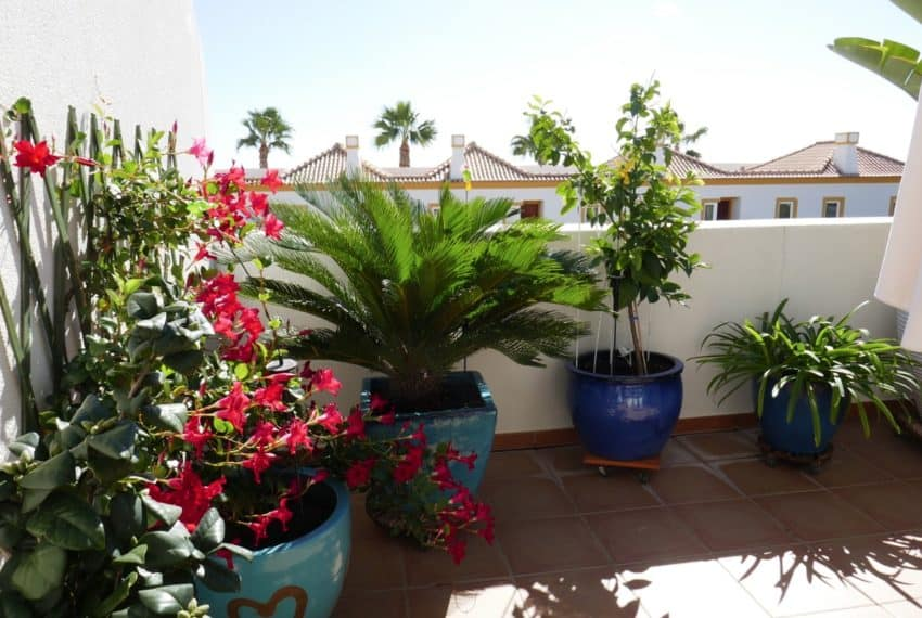 2bedroom townhouse Tavira Eastern Algarve Pool (17)