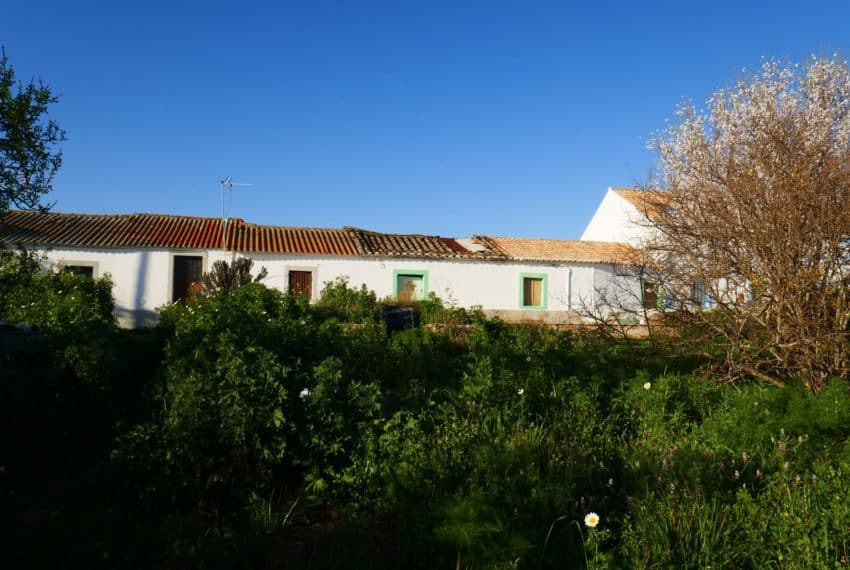 farmhouse near Tavira Real Estate Property Eastern Algarve (5)