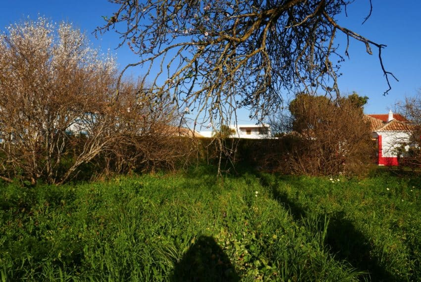 farmhouse near Tavira Real Estate Property Eastern Algarve (6)