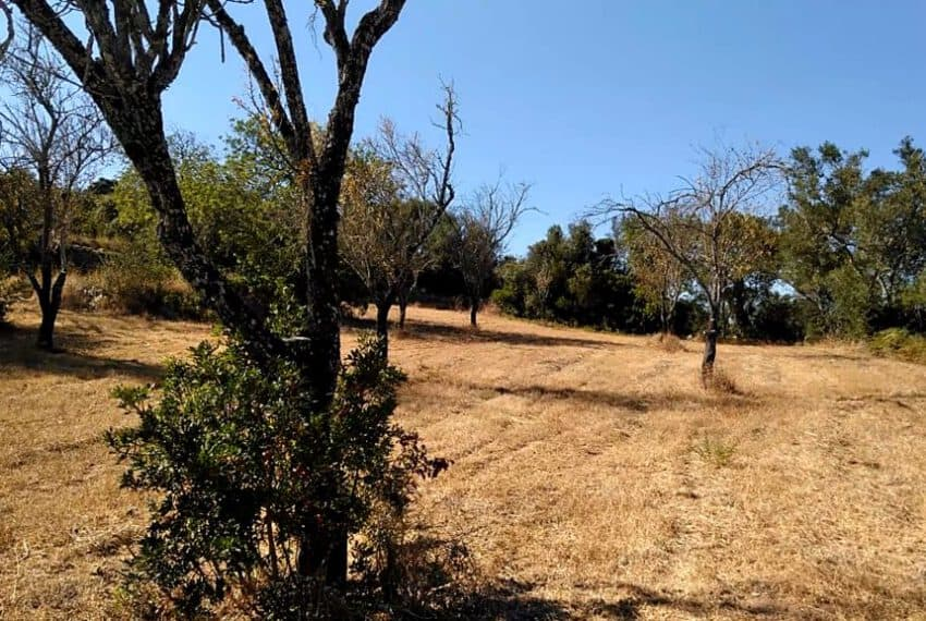 land with old house Loule Algarve beach golf (2)