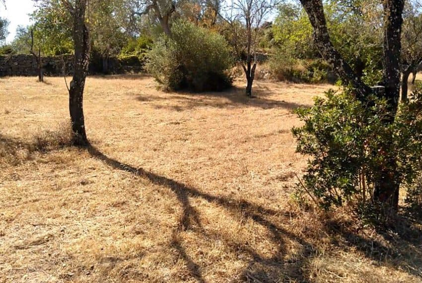 land with old house Loule Algarve beach golf (3)
